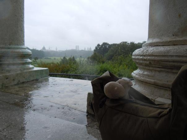Otto trotzt dem Regenwetter im Englischen Garten